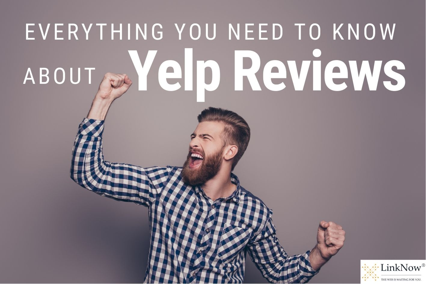 Everything you need to know about Yelp reviews.